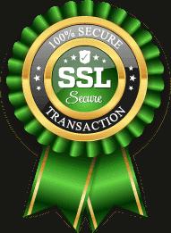پرداخت حفاظت شده با پروتکل TLS/SSL